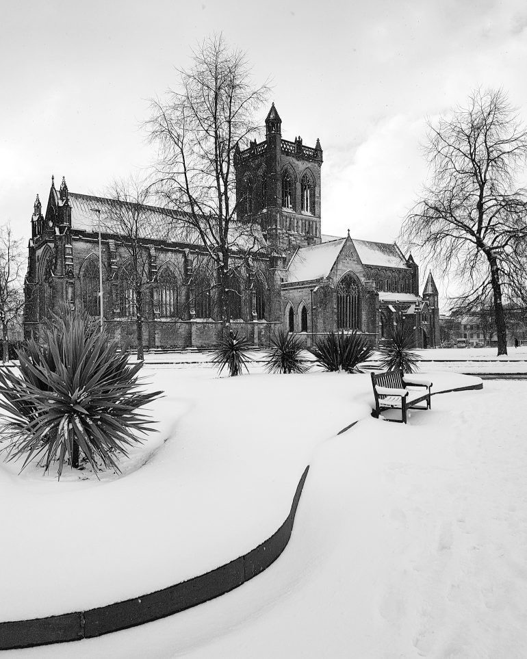 Paisley in the snow by Gary Chittick